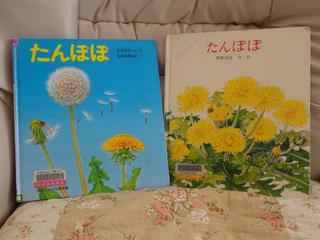 DSC00464_01.JPG
